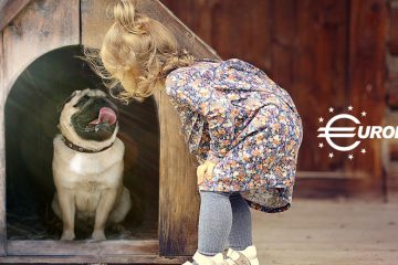 Blog Casas Perros Eurolacas